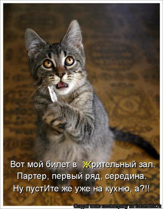 kotomatritsa_WT (546x700, 348Kb)