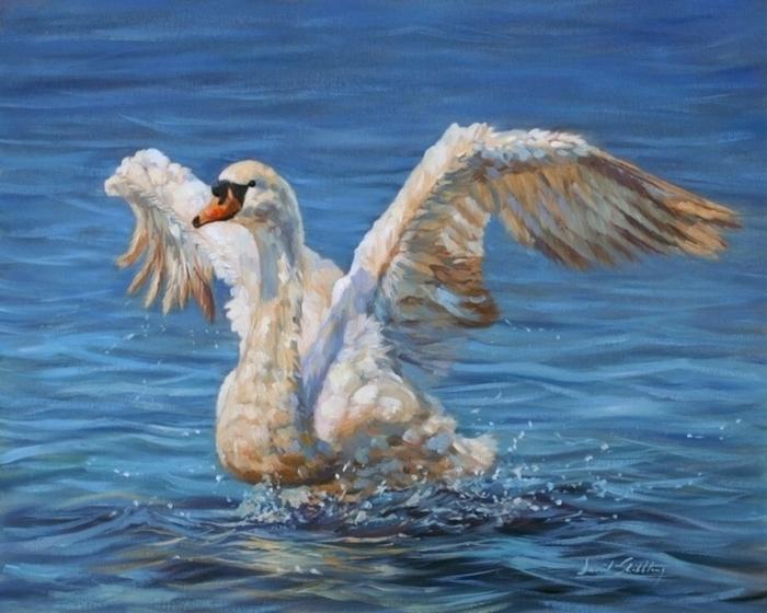 336374facb5d439b4d65e62a19443c39--swans-oil-on-canvas (700x560, 384Kb)