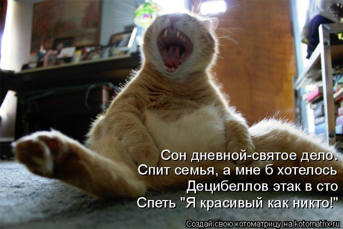 kotomatritsa_2F (700x467, 233Kb)