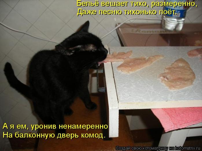 kotomatritsa_M (700x524, 302Kb)