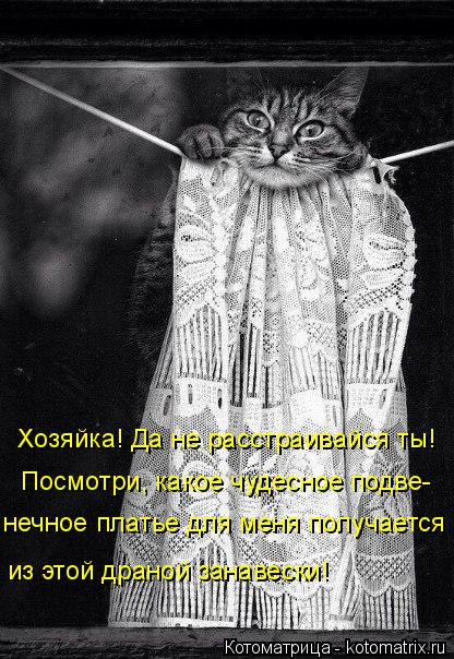 kotomatritsa_p (416x604, 233Kb)