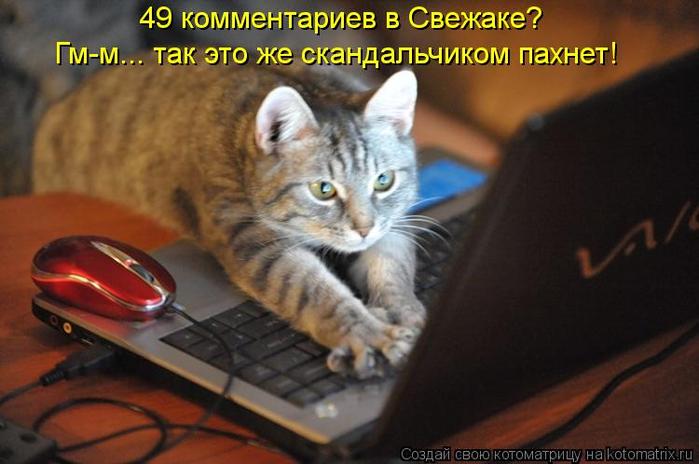 kotomatritsa_I_ (700x464, 301Kb)