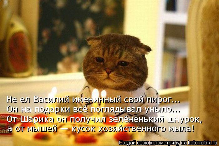 kotomatritsa_I (700x466, 291Kb)