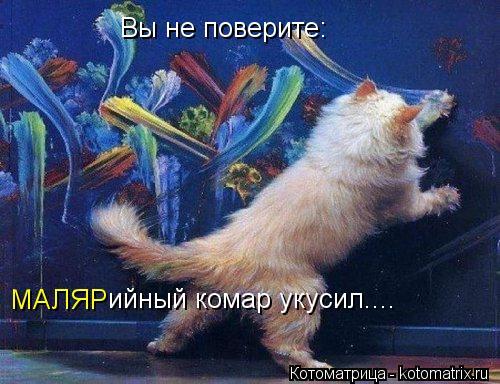 kotomatritsa_kc (500x384, 188Kb)