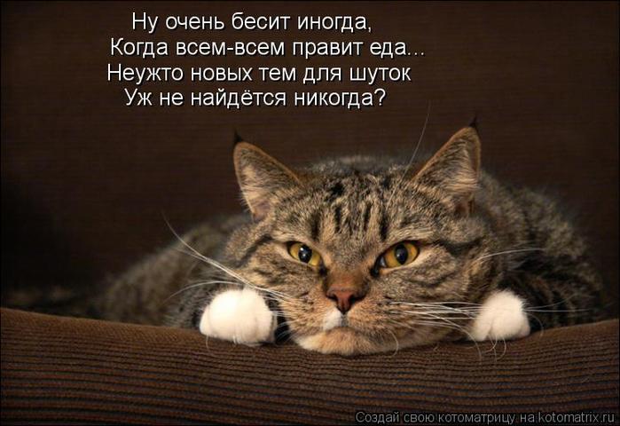 kotomatritsa_qa (700x480, 314Kb)