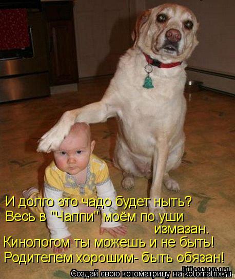 kotomatritsa_3z (458x543, 215Kb)