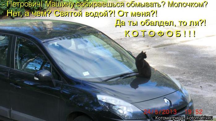 kotomatritsa_9W (700x393, 311Kb)