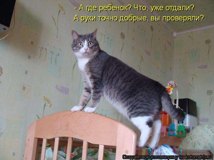 kotomatritsa_5p (700x524, 321Kb)