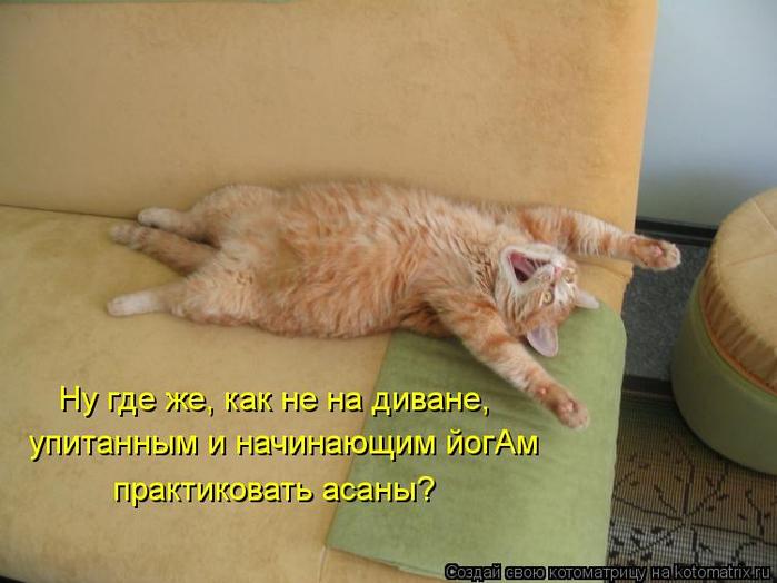 kotomatritsa_A (700x524, 290Kb)