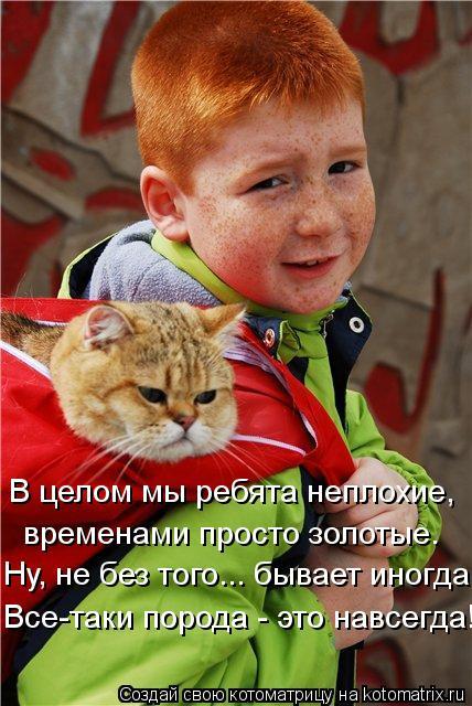 kotomatritsa_pf (428x640, 278Kb)