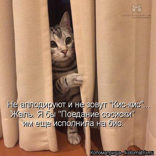 kotomatritsa_wr (500x500, 161Kb)