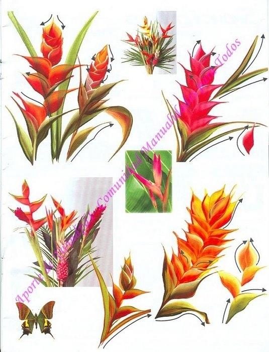 Журнал по рисованию роз. 3723464_173474--38706523-m750x740-ua609b
