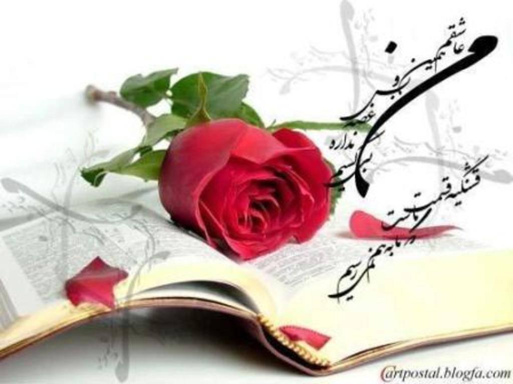 Book  - Page 3 34655205bb65c5d511fd50f60636d5964fa5c1b
