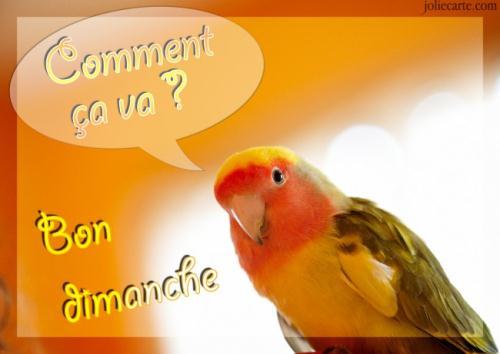 Dimanche 26 mars  Dimanche-comment-ca-va