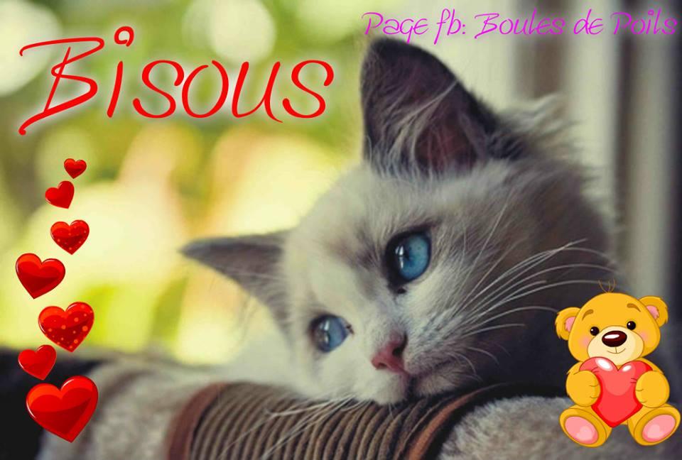 Break and Come Back : Absences et Retours présagés sur le forum - Page 11 Bisous_019