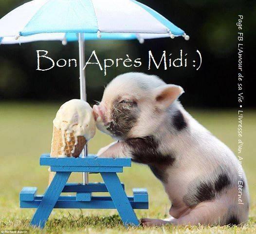 Mardi 9 septembre Bon-apres-midi_020