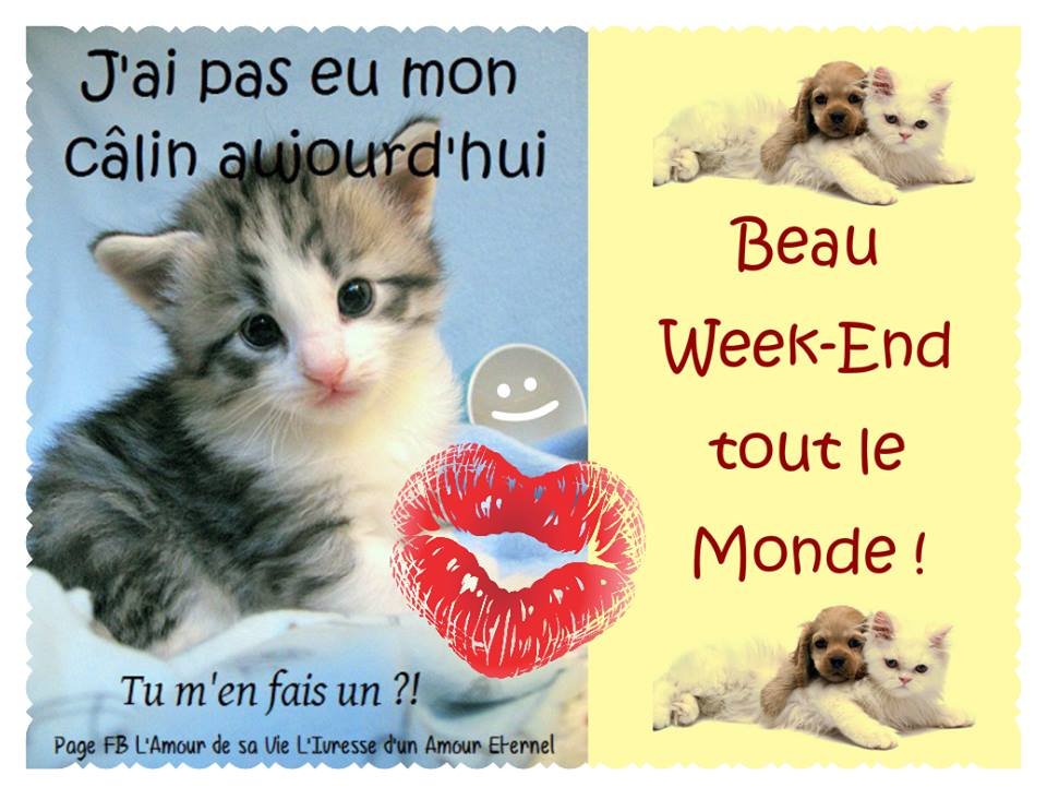 samedi 03 juin Bon-week-end_140