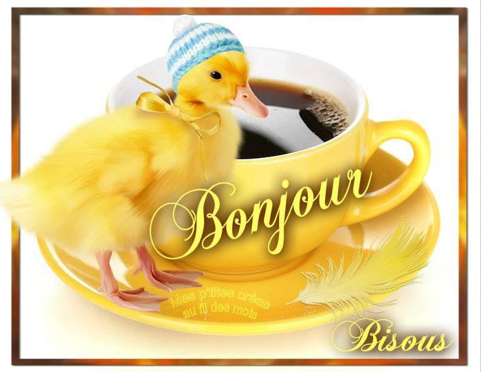 Lundi 18 avril Bonjour_059