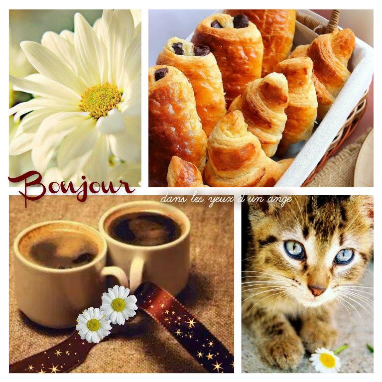 Samedi 14 novembre 2015 Bonjour_073