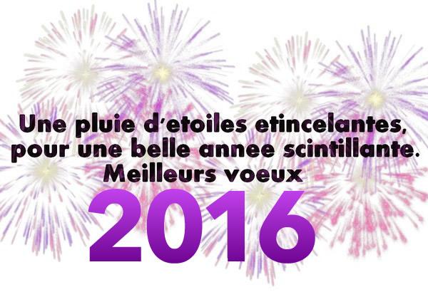 Cairns de Janvier 2016 Bonne-annee_020