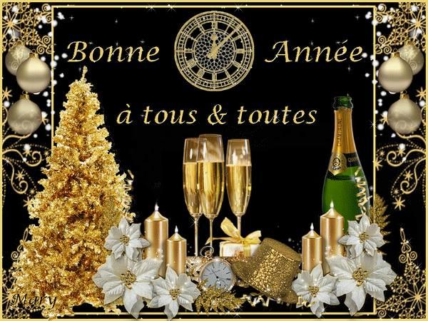 Meilleurs vœux à tous... Bonne-annee_021