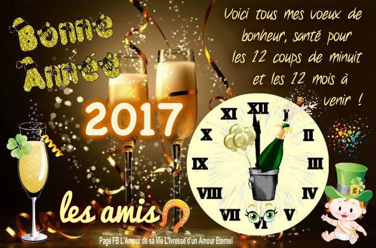 Bonne Année 2017 Bonne-annee_036a
