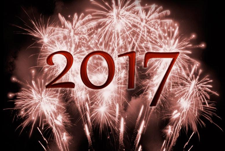 Meilleurs voeux pour 2017 Bonne-annee_069