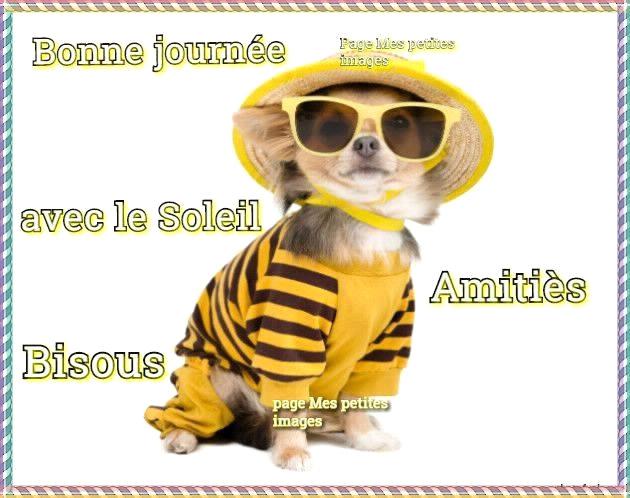 cairns d'Août 2015 - Page 6 Bonne-journee_091