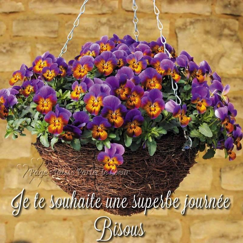 Mercredi 13 avril Bonne-journee_099