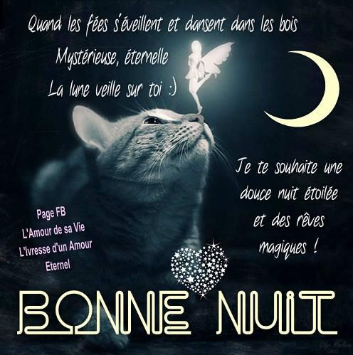 Vendredi 25  novembre Bonne-nuit_073