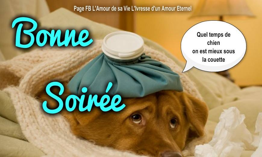 Samedi 25 novembre Bonne-soiree_035