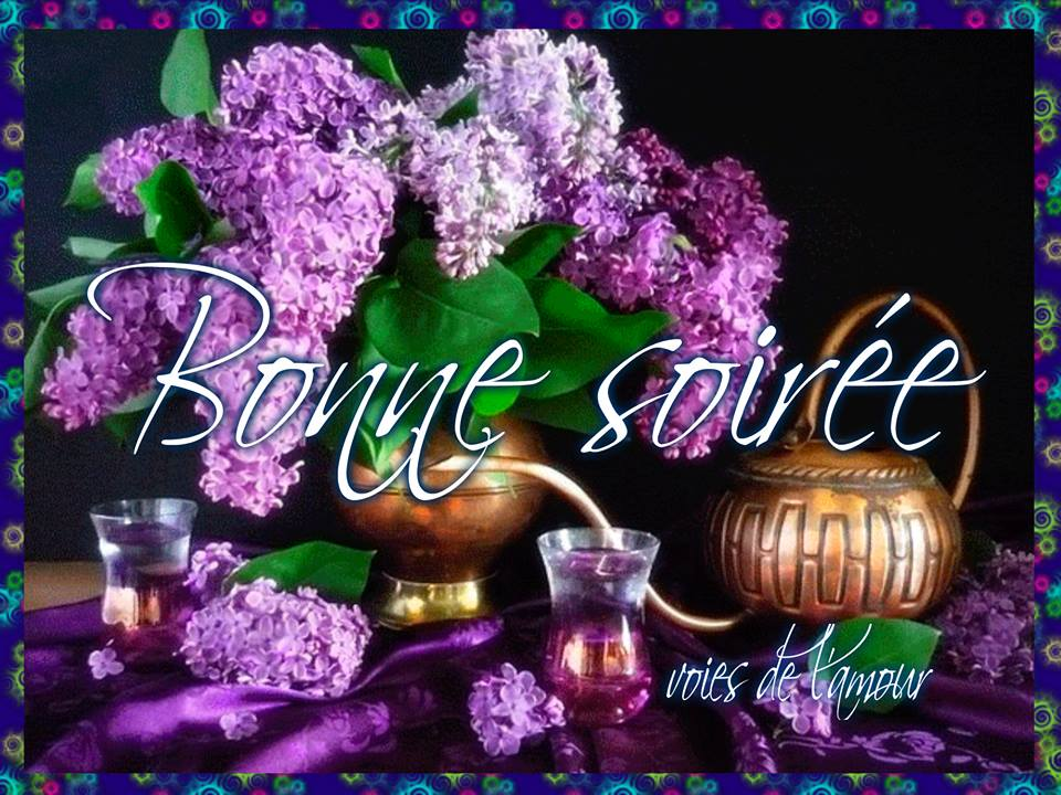 Mercredi 1er mars 2017 Bonne-soiree_130
