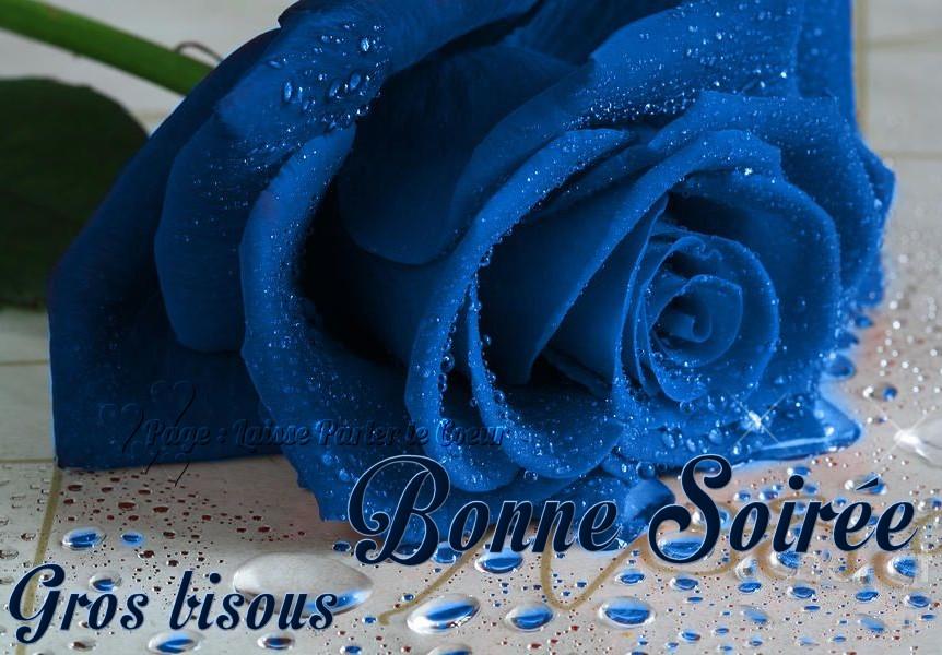 Lundi 11 avril Bonne-soiree_131