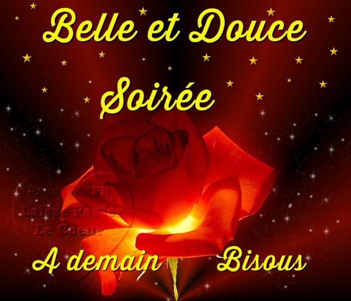 Lundi 27 novembre  Bonne-soiree_156