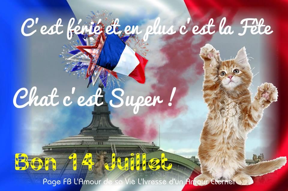 cairn de Juillet 2015 - Page 6 Fete-nationale_006