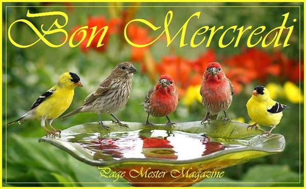 Mercredi 9 mars Mercredi_017