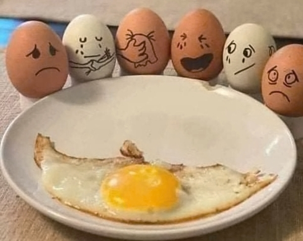 Slikovnica - Page 18 Sadness-eggs-funny-picture-6605149