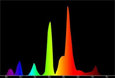 Spectro pas cher... Fluocompact_20_W_spectre