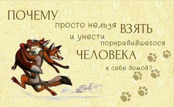 Позитивчик))) - Страница 2 104177205_20
