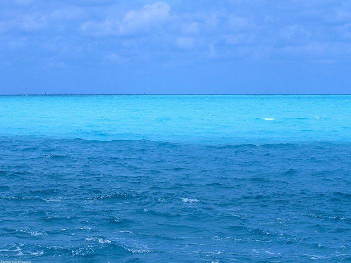 Вода 42611263_1239884329_Blue_Ocean_Hawaii