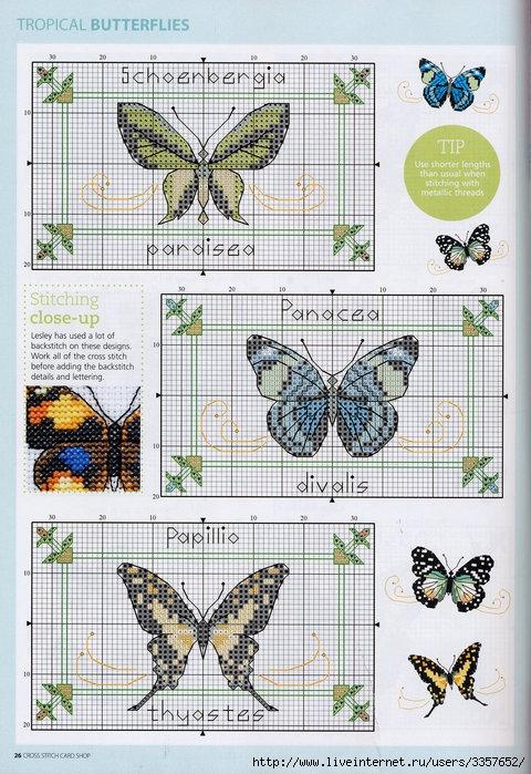 Много..... 56025378_Spread_your_Wings__Tropical_Butterflies_Pattern_Pg_3