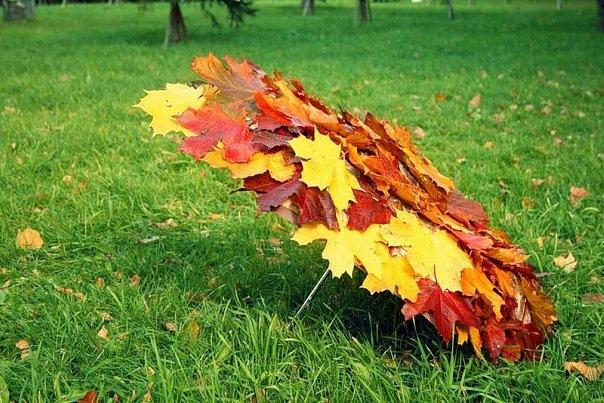 Empieza el otoño. 116531733_8938705b832c