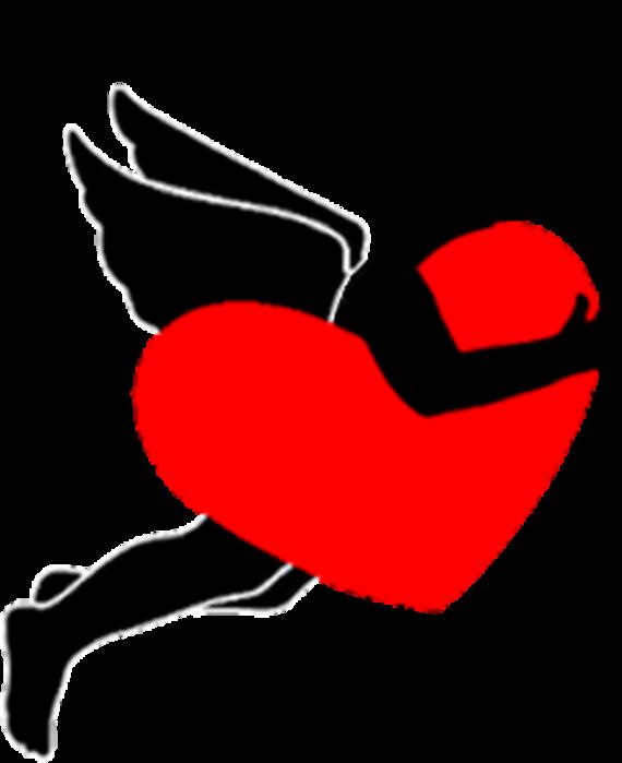 С Днем всех влюбленных и три  простых истории любви. 70048498_20