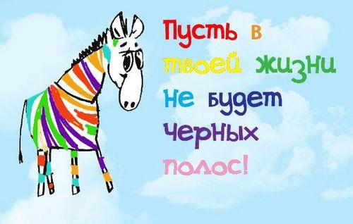 С днем рождения! - Страница 2 74265391_zebra