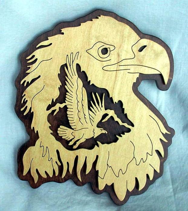 ******* 79711889_eagle