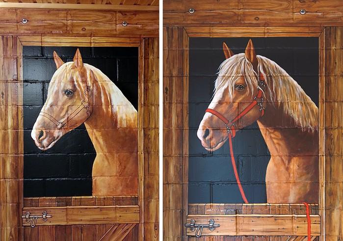 Роспись стен. Роспись-обманка от бельгийского художника VAN HOEF 97653725_39