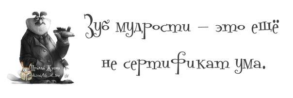 Позитивчик))) 102525253_1372616382_frazochki24