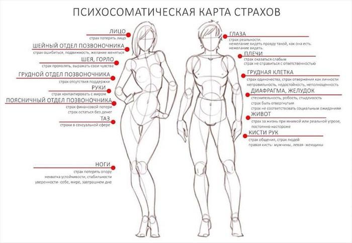 ТЕЛЕСНАЯ КАРТА СТРАХОВ 125302181_UOiDy7yLDAs