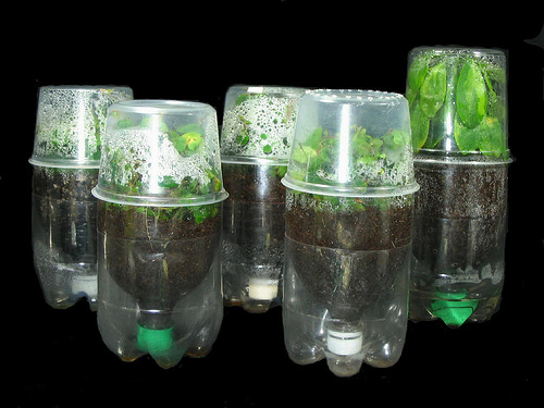 Поделки для дачи своими руками из шин и пластиковых бутылок 99384667_3518263_gorshok