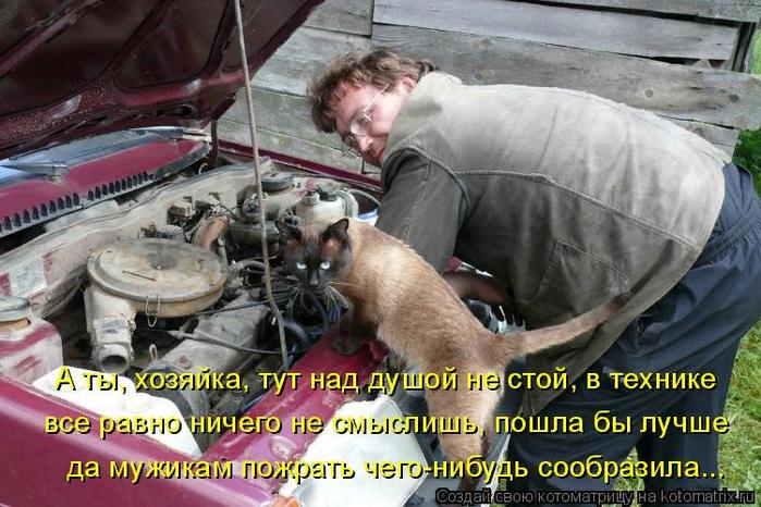 kotomatritsa_eh (700x466, 472Kb)